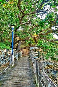 Walkway, Path, Wooden, Outdoor, Footpath, Pathway