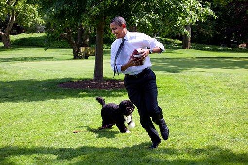 Barack Obama And Bo, 2009, Play, Run