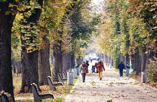 Park, Path, Road, Bench, People, Walking, Autumn