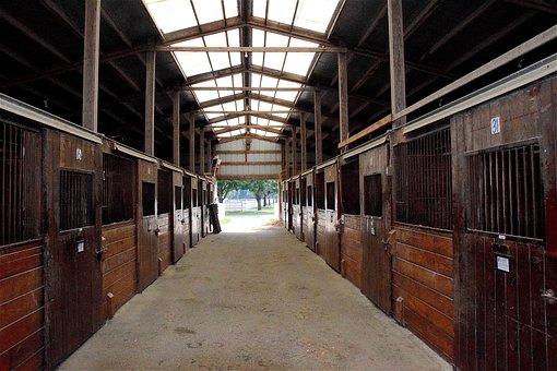 Stable, Horse, Rural, Farm, Ranch, Equine, Equestrian