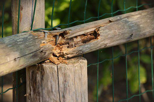 Wood, Old, Broken, Wood Fence, Weathered, Old Wood