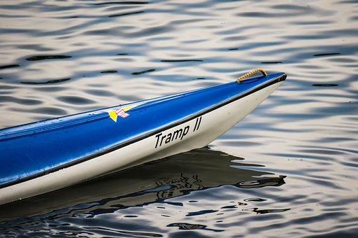 Bug, Boat, Paddle Boat, Water Sports, Canoeing, Kayak
