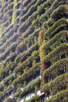 City, Building, Modern, Plants, Garden, Green