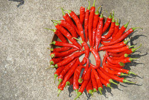 Pepper, Dry, Solar, Sunshine, Food, Spice, Red