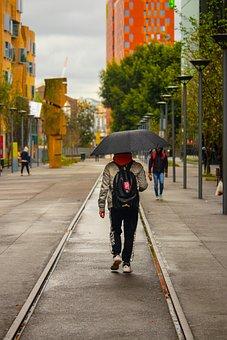 Umbrella, Man, Outdoor, Rain, Wet, Street, Colourful