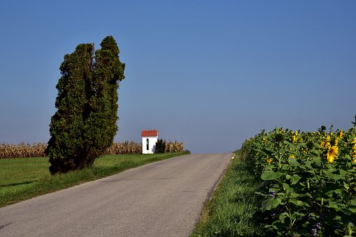 Road, Away, Field, Landscape, Sky, Nature, Scenic