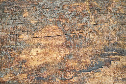 Wood, Billet, Natural, Nature, Tree, Old, Pattern