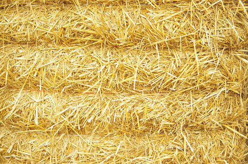Hay, Straw, Bale, Harvest, Nature, Background Texture