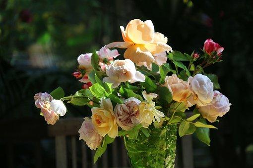 Roses, Bouquet, Flowers, Decoration, Floral, Color