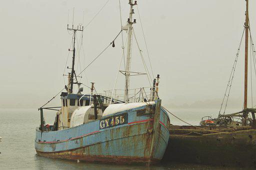 Boat, Mist, Water, Fog, Fishing, Fisherman, Port