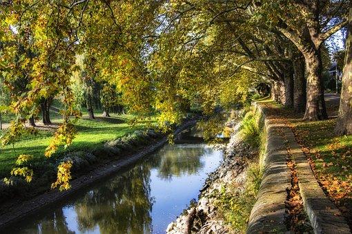 Autumn, Trees, Nature, Lying, Mood, Foliage, Idyllic
