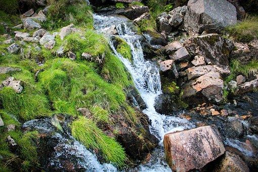 Stream, Fresh Water, Nature, Pathway, Climbing