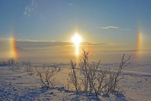 Winter, Sun, The Bright Sun, Snow, Landscape, Nature