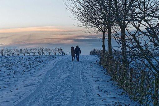 Walk, Winter, Snow, Sunset, Cold