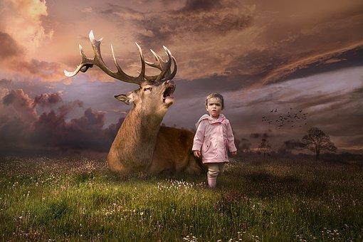Deer, Antlers, Animal, Girl, Child, Female, Field