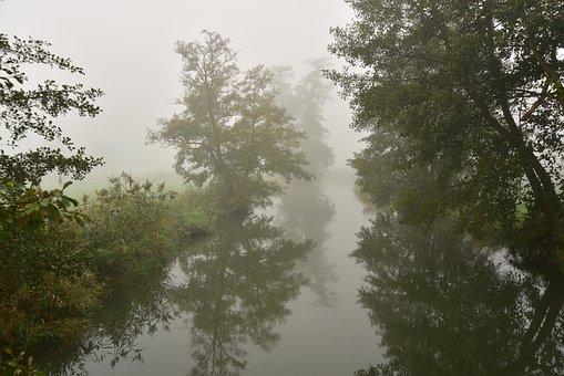 Fog, River, Bach, Landscape, Trueb, Autumn, Dark, Trees