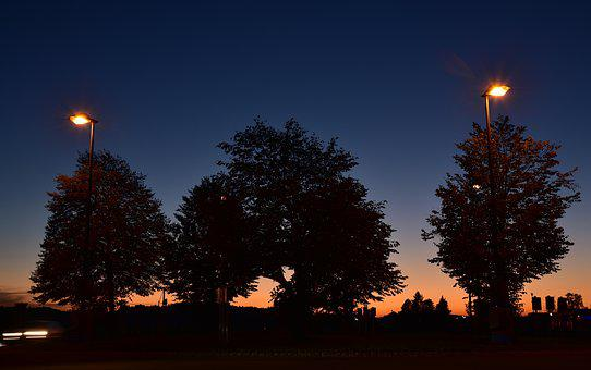 Sunset, Blue Hour, Trees, Lanterns, Dark, Light