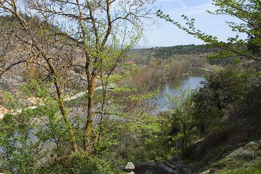 Landscape, River, Nature, Beautiful, Trees, Panorama