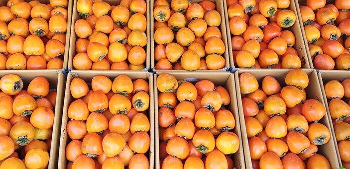 Persimmon, For The Peak Time, Fruit, Autumn