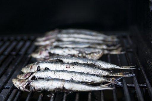 Sardines, Seafood, Grilling, Mediterranean, Fishing