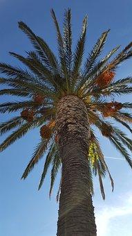 Palma, The Sky, Blue Sky