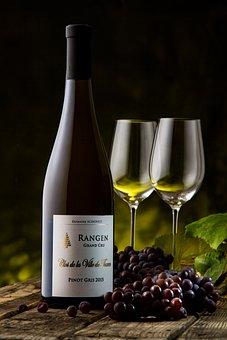 Wine, Vintage, Wine Glasses, Schoffit, Grapes, Vineyard