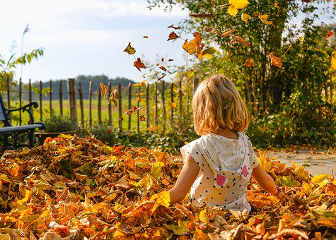 Girl, Playing, Leaves, Autumn, Happy, Fun, Childhood