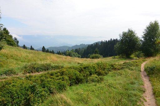 Beskid Sądecki, Mountains, Trail, Designation Of The