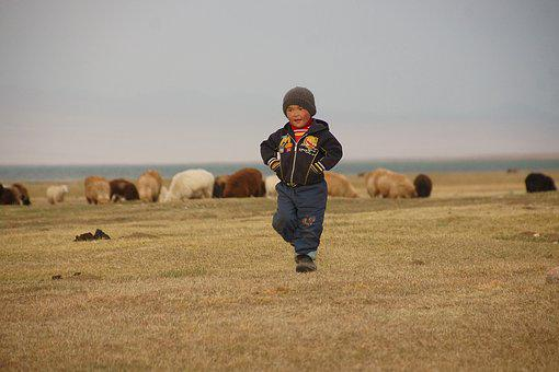 Kyrgyzstan, Song Kul, Landscape, Population, Shepherd