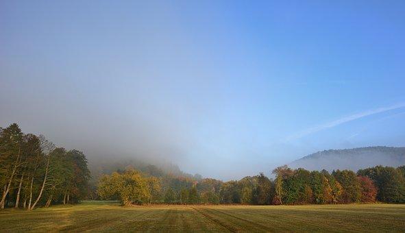 Morning, Fog, Park, Morgenstimmung, Sunrise
