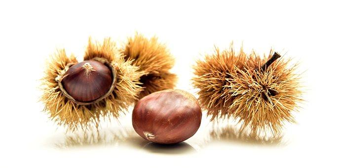 Chestnut, Autumn, Nature, Fruit, Autumn Fruit, Prickly