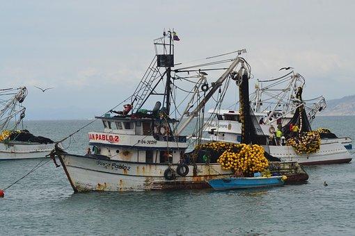 Boat, Fishing, Sea, Fishermen, Ocean