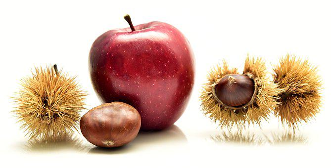 Apple, Chestnut, Eat, Fruits, Autumn, Spur, Delicious