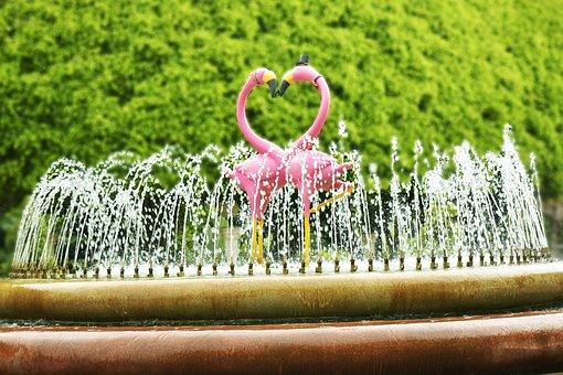 Couples, Fond, Pink, Green, Nature, Tree, Romance