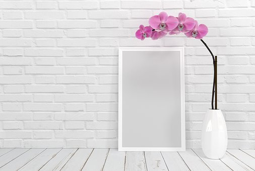 Picture Frame, Flower, Orchid, Background, Wall, Photo