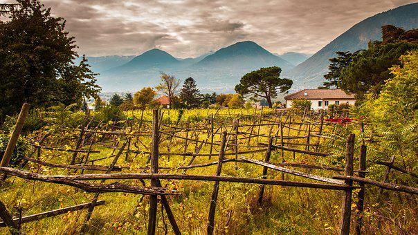South Tyrol, Winegrowing, Italy, Mountains