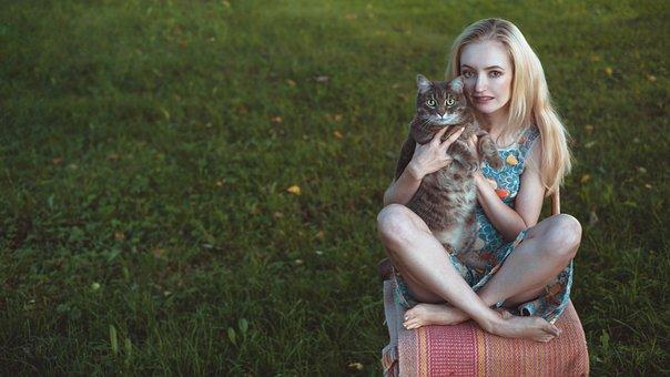 Summer, Cat, Girl, Blonde, Portrait, Nature, Grass