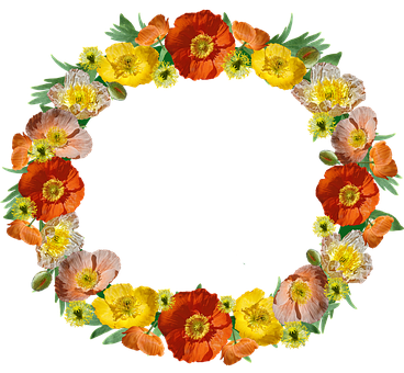 Poppies, Flowers, Wreath, Border, Floral, Frame