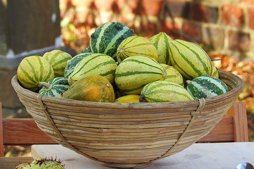 Pumpkins, Decorative Squashes, Thanksgiving, Autumn