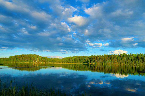 Landscape, Lake, Water, Forest, Tree, Plant, Nature