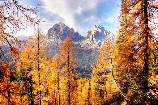Autumn Light, Dolomites, Mountains, Larch, Autumn, Rock