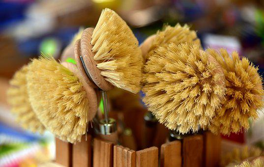 Brushes, Bristles, Cleaning, The Brushes, Market, Sale