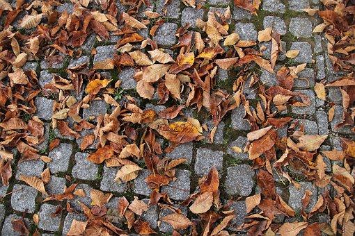 Cube, Paving Slabs, Autumn, Foliage, Morning, Park