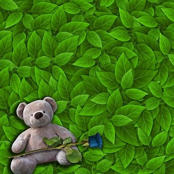 Romantic, Background, Teddy Bear, Tender, Green Leaves