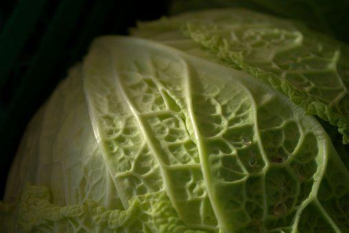Savoy, Vegetables, Savoy Cabbage, Kohl, Vegan, Bio