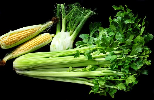 Vegetables, Celery, Fennel, Corn, Fresh, Vegetarian