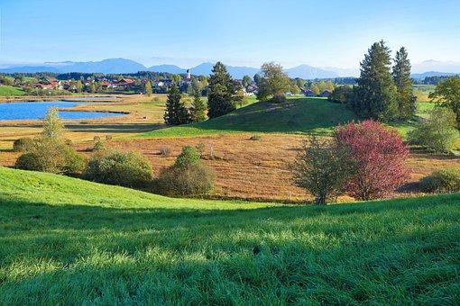 Landscape, Nature, Grass, Field, Still, Alpine, Summer