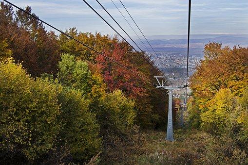 Fall Colors, Vivid, Foliage, Autumn, Colorful, Vibrant