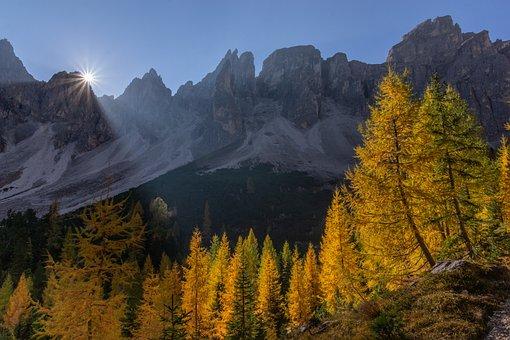 Antersasc, Salvunantersasc, Dolomites, Nature, Italy