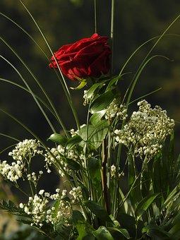 Bouquet, Rose, Purple, White Flowers
